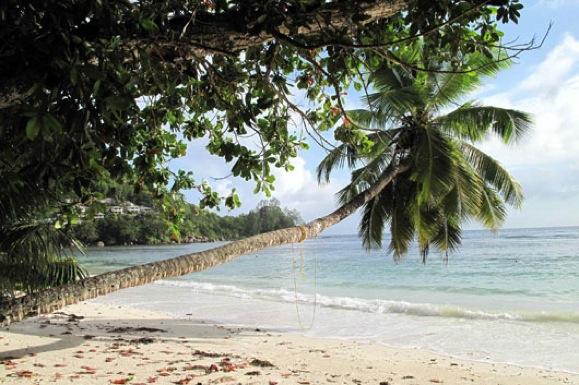 Les Seychelles, la destination idéale