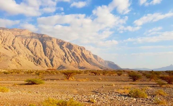 À la découverte des Émirats : un weekend à Al Ain !