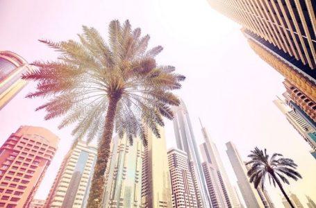 Recherche d'emploi à Dubai : tout ce qu'il faut savoir !
